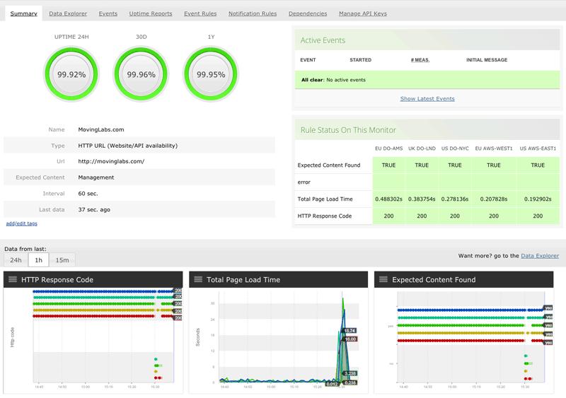 API, website availability monitor summary report